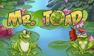 Mr Toad Slot Overview for Mobile Pokies Players